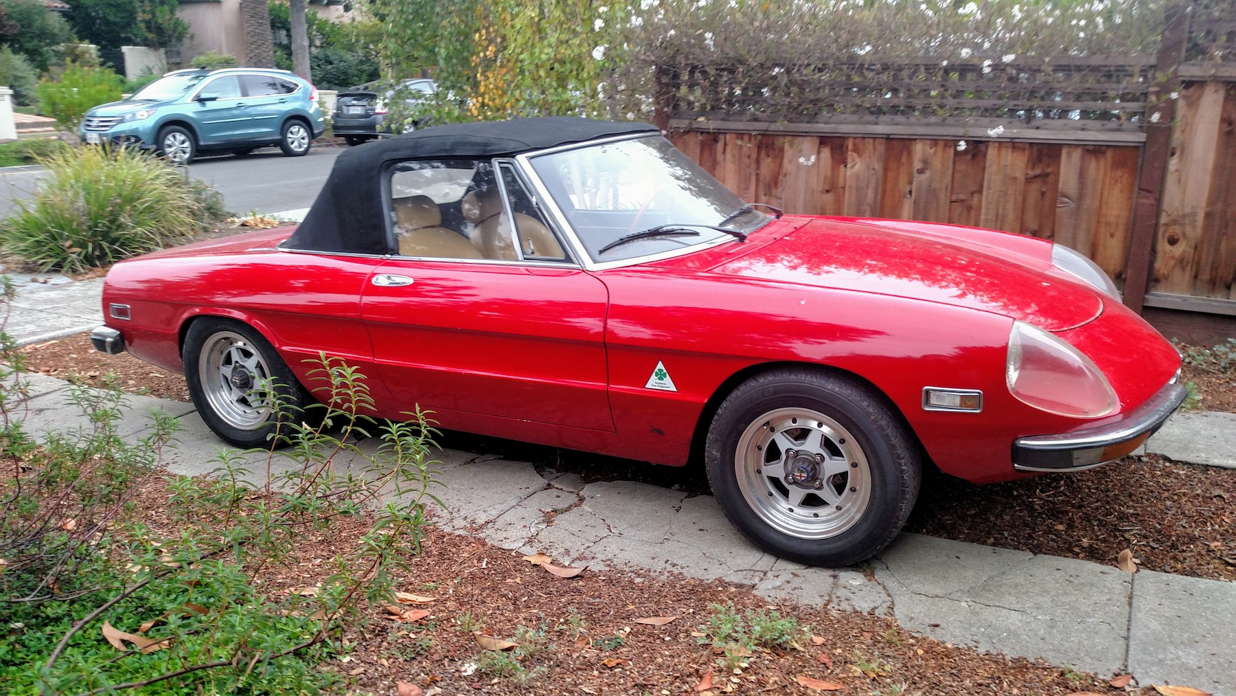 The ex-Joe Cantrell 1972 ALFA Spider